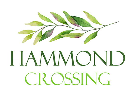 Hammond Crossing